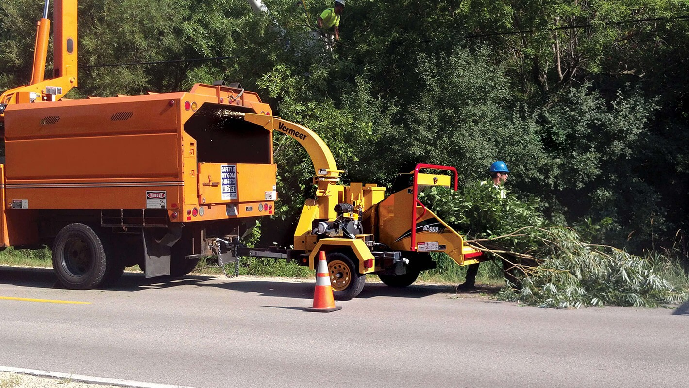 Commercial Tree Services-La Mesa CA Tree Trimming and Stump Grinding Services-We Offer Tree Trimming Services, Tree Removal, Tree Pruning, Tree Cutting, Residential and Commercial Tree Trimming Services, Storm Damage, Emergency Tree Removal, Land Clearing, Tree Companies, Tree Care Service, Stump Grinding, and we're the Best Tree Trimming Company Near You Guaranteed!
