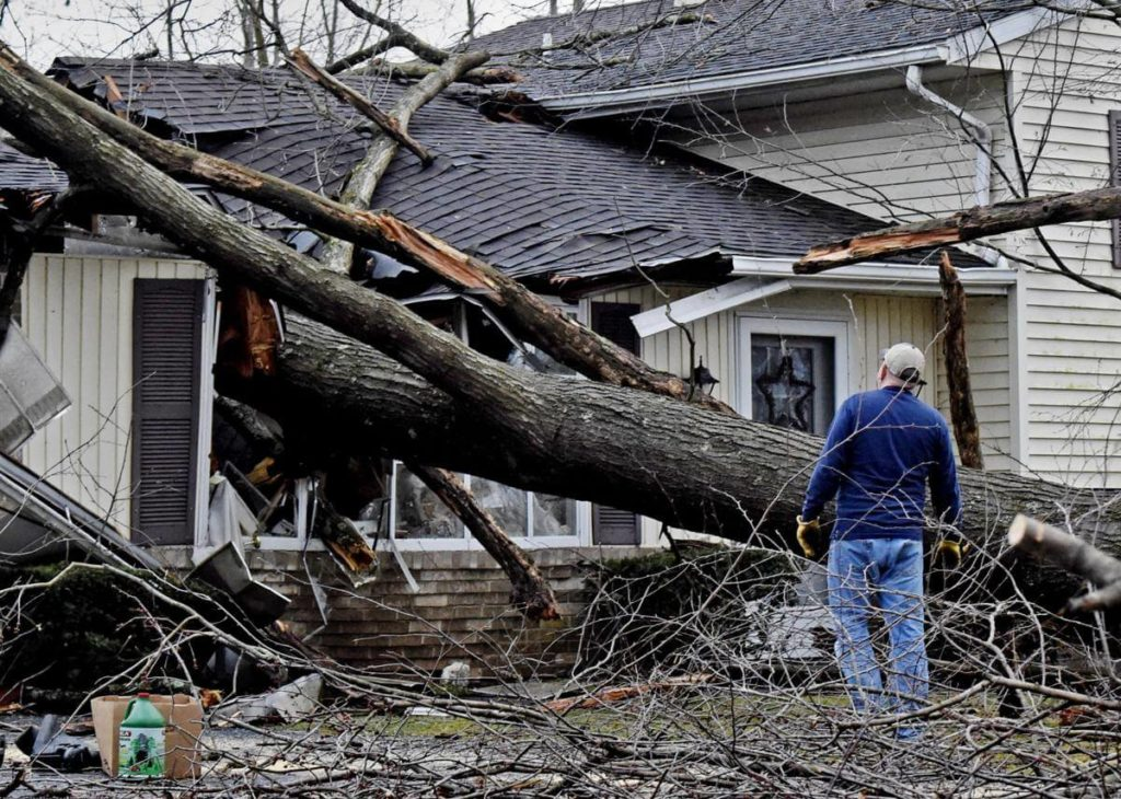 Storm Damage-La Mesa CA Tree Trimming and Stump Grinding Services-We Offer Tree Trimming Services, Tree Removal, Tree Pruning, Tree Cutting, Residential and Commercial Tree Trimming Services, Storm Damage, Emergency Tree Removal, Land Clearing, Tree Companies, Tree Care Service, Stump Grinding, and we're the Best Tree Trimming Company Near You Guaranteed!